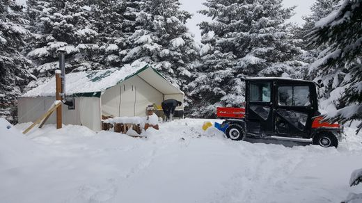 snowy-tent_tn